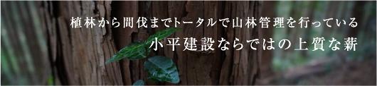 植林から間伐までトータルで山林管理を行っている小平建設ならではの上質な薪